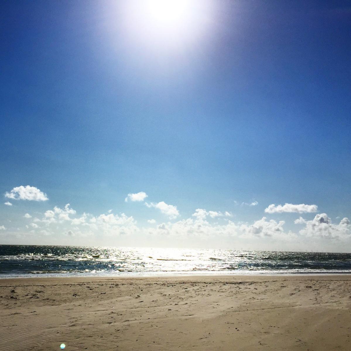 Die Woche in Bildern –Meeresedition
